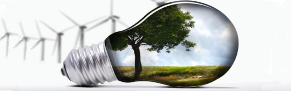 Light bulb iStock_000007618481XSmall